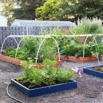 bed raised backyard vegetable garden ideas