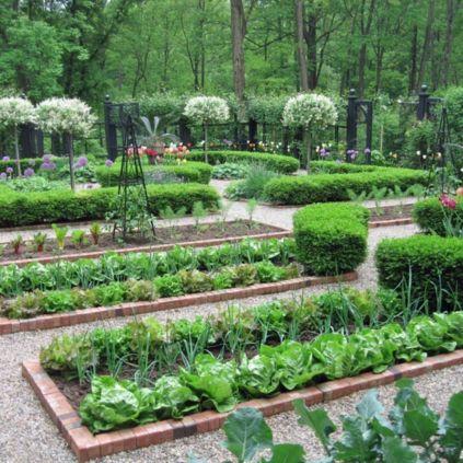 Complete vegetable garden