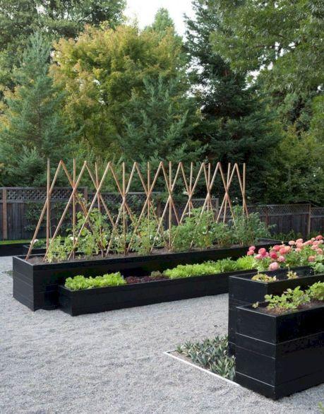DIY Cold Frame Garden Box 1