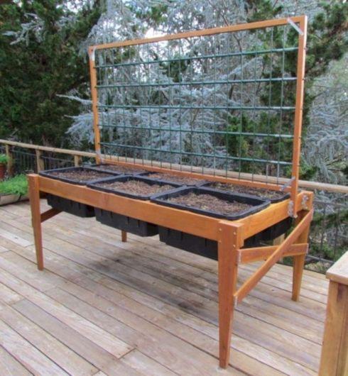 DIY Cold Frame Garden Box 4