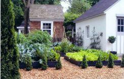 French Potager Garden Designs