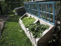 Greenhouse Raised Herb Gardens 3
