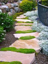 Irish Moss with Flagstone Path