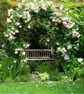 Rose Garden Landscape Design
