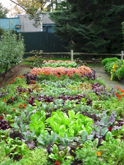 Beautiful Fall Garden Ideas For Awesome Fall Season 10