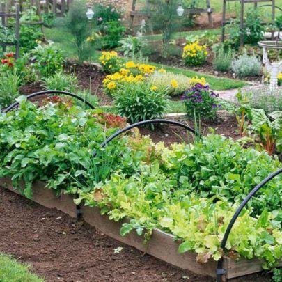 33+ Beautiful Fall Garden Ideas For Awesome Fall Season – DECOREDO