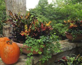 Beautiful Fall Garden Ideas For Awesome Fall Season 320