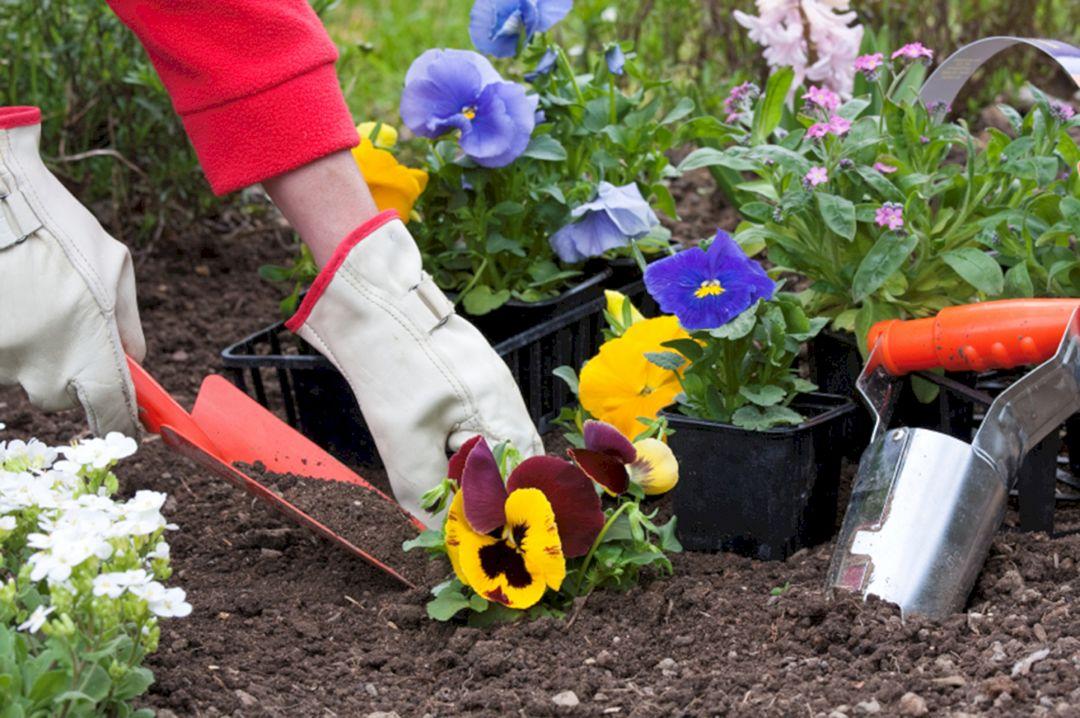 Beautiful Fall Garden Ideas For Awesome Fall Season 80