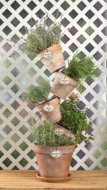 Awesome Vertical Garden Inspiration 111