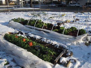 Winter Garden Design Ideas 11