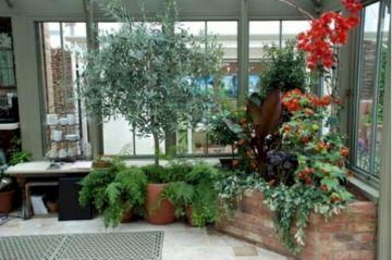 Winter Garden Design Ideas 381