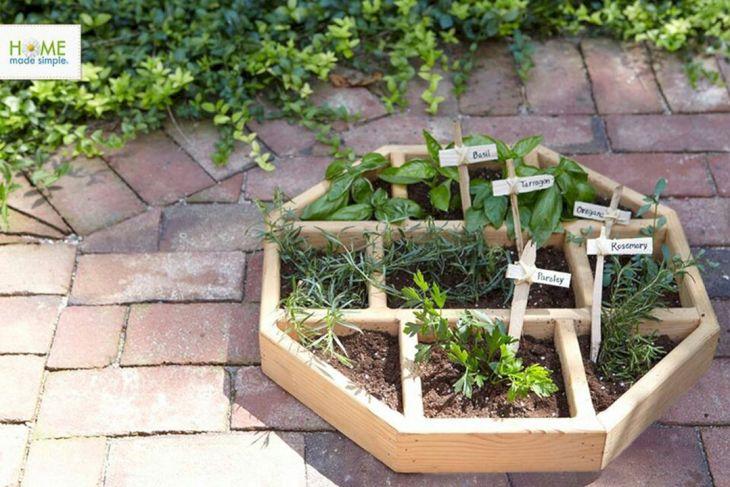 Best Small Vegetable Garden