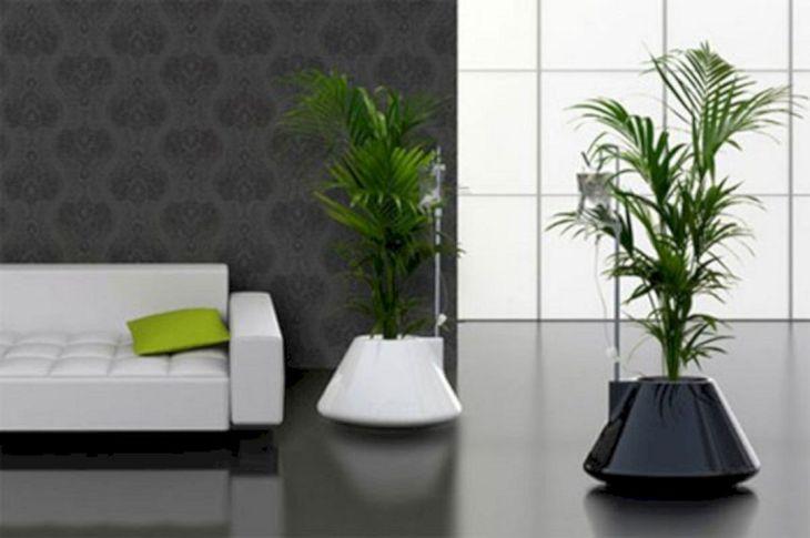 Contemporary Indoor Plant Pots