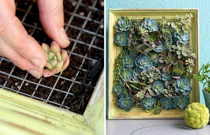DIY Living Walls Vertical Garden Ideas