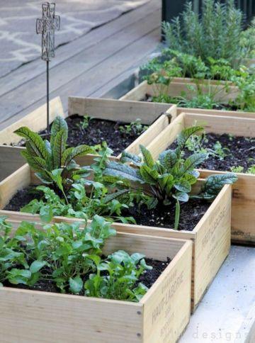 Idea Small Vegetable Container Gardens