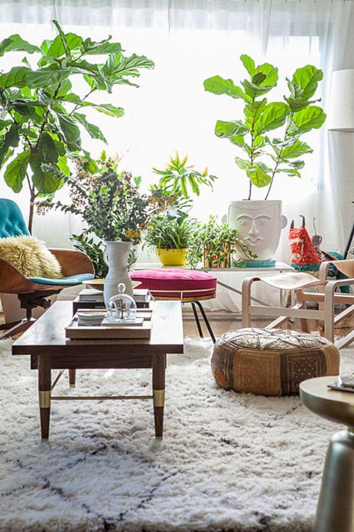 Indoor Plant Decorating Ideas