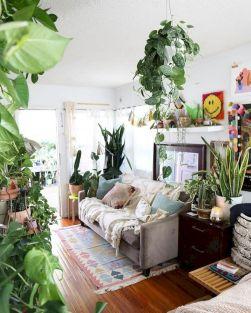 Indoor Plant Living Room Decors