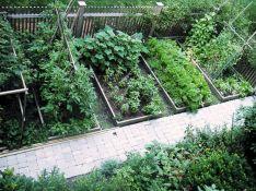 Small Vegetable Garden Design
