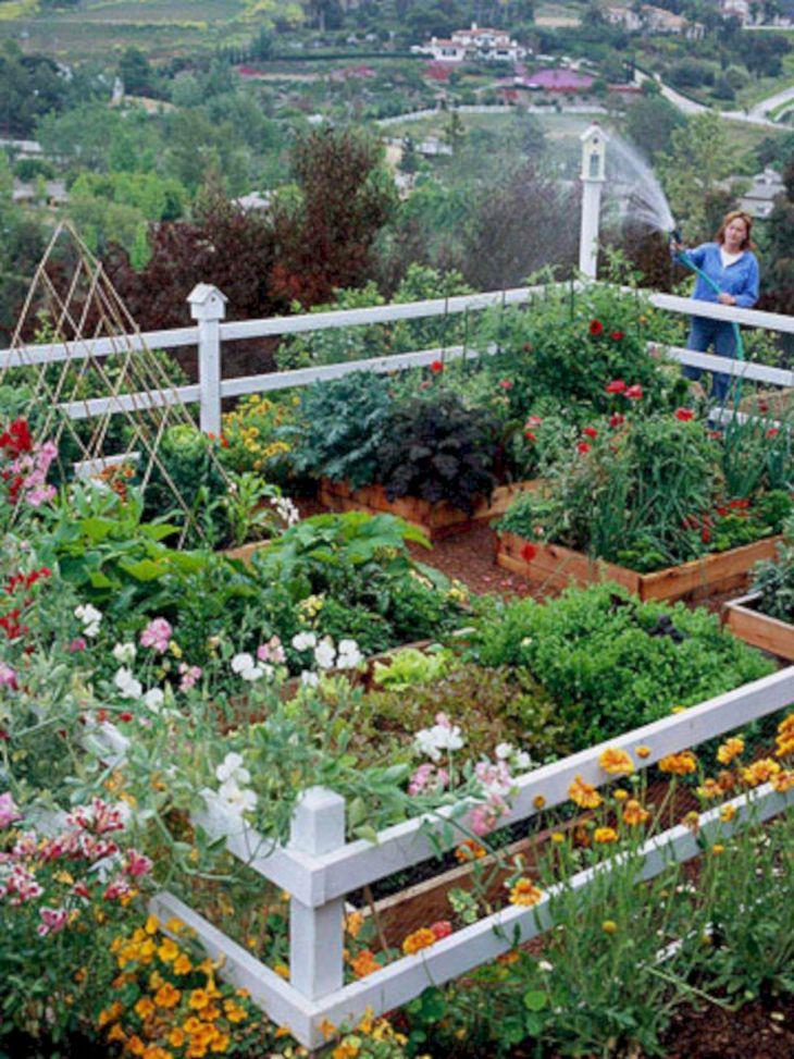 Small Vegetable Garden Designs