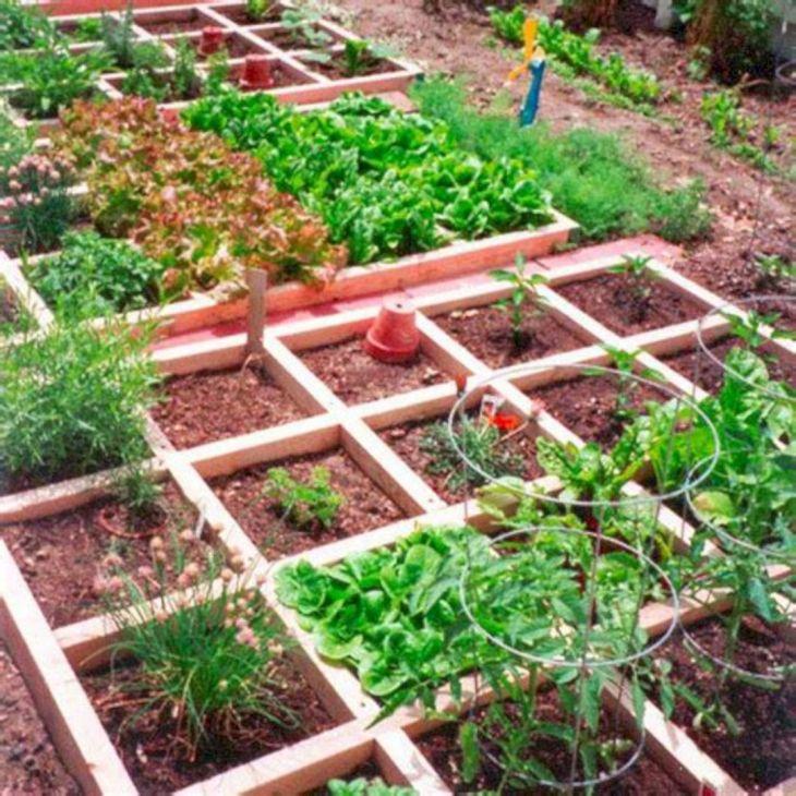 small vegetable garden ideas - Small Vegetable Garden Ideas Pictures