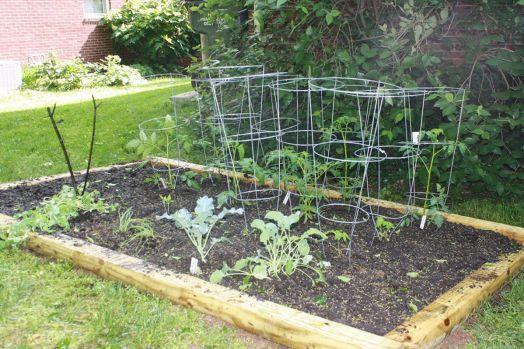 Small Vegetable Gardens Design Idea