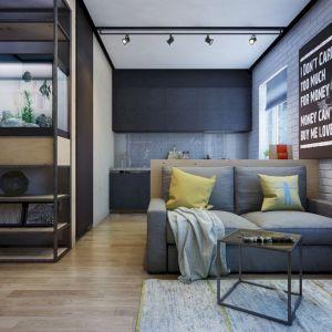 Bachelor Apartment Design Ideas