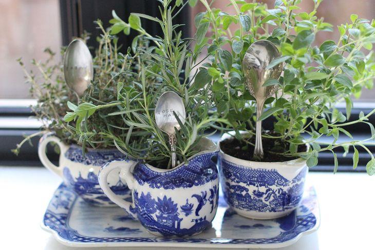 DIY Indoor Herb Garden Design