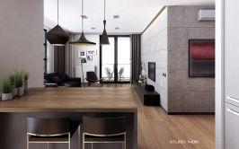 Open Concept Apartment Design