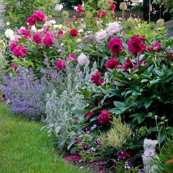 Peonies Flower Garden Design Idea