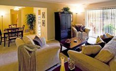 Rental Apartment Decorating Idea