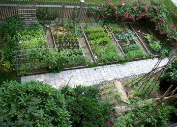Vegetable Garden Design Plans