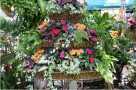 Container Flower Garden Design Idea