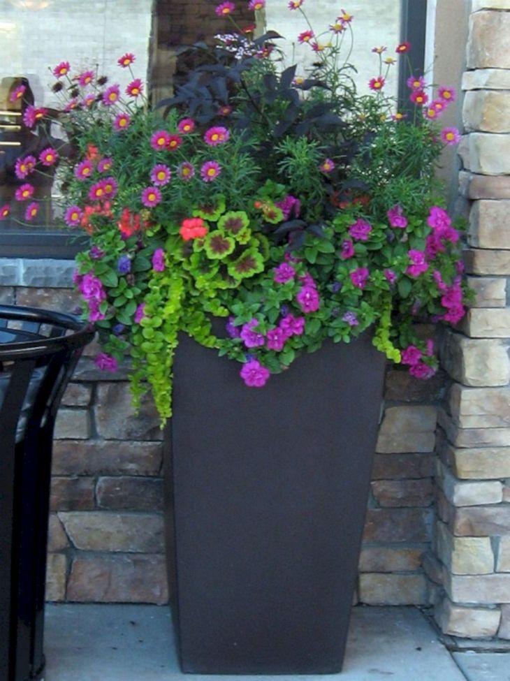 Container Gardens Ideas Designs