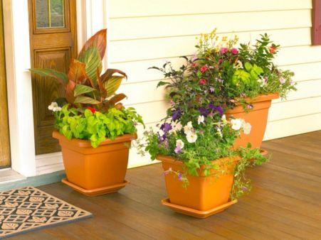 Front Porch Container Plants
