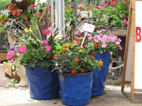Front Porch Flower Pot Idea