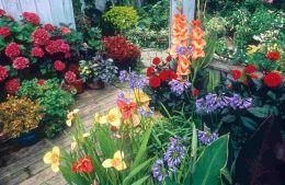 Small Container Flower Garden Designs