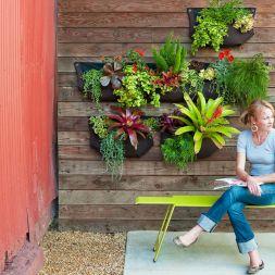 Small Garden Wall Ideas