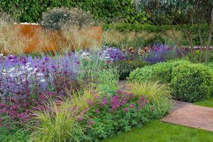 Beautiful Iris Garden Ideas 19