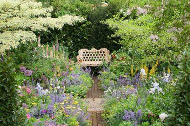 Beautiful Iris Garden Ideas 4