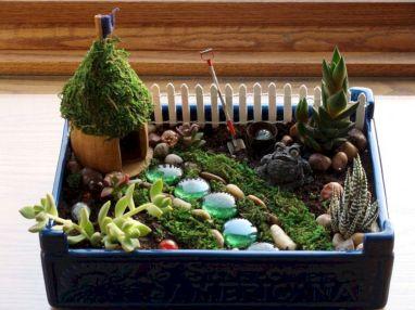 Indoor Fairy Garden Ideas 19