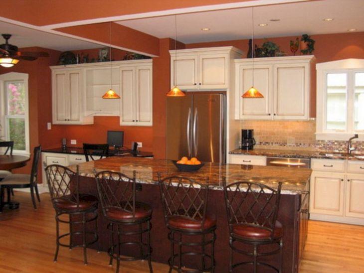 Kitchen Color Schemes Ideas 10