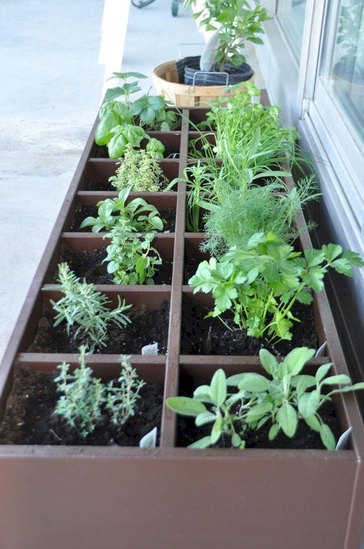 Herb Garden Ideas 11