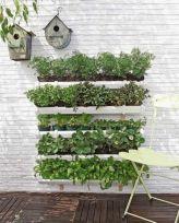 Herb Garden Ideas 4