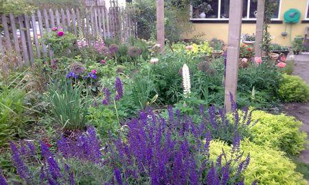 Small Perennial Garden Designs 2