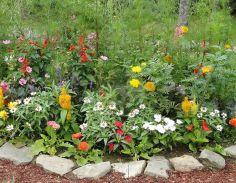 Small Perennial Garden Designs 7