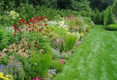 Small Perennial Garden Designs 9