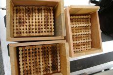 DIY Mason Bee House Design 3