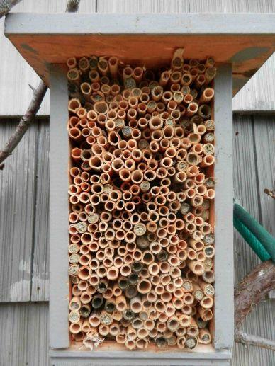 DIY Mason Bee House Design 4
