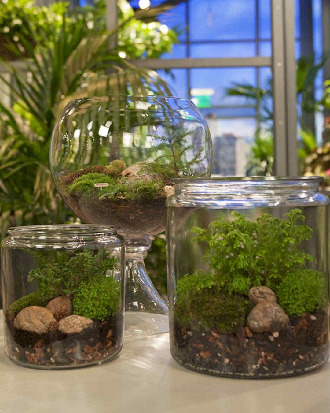 DIY Fairy Terrarium Indoor Garden 23