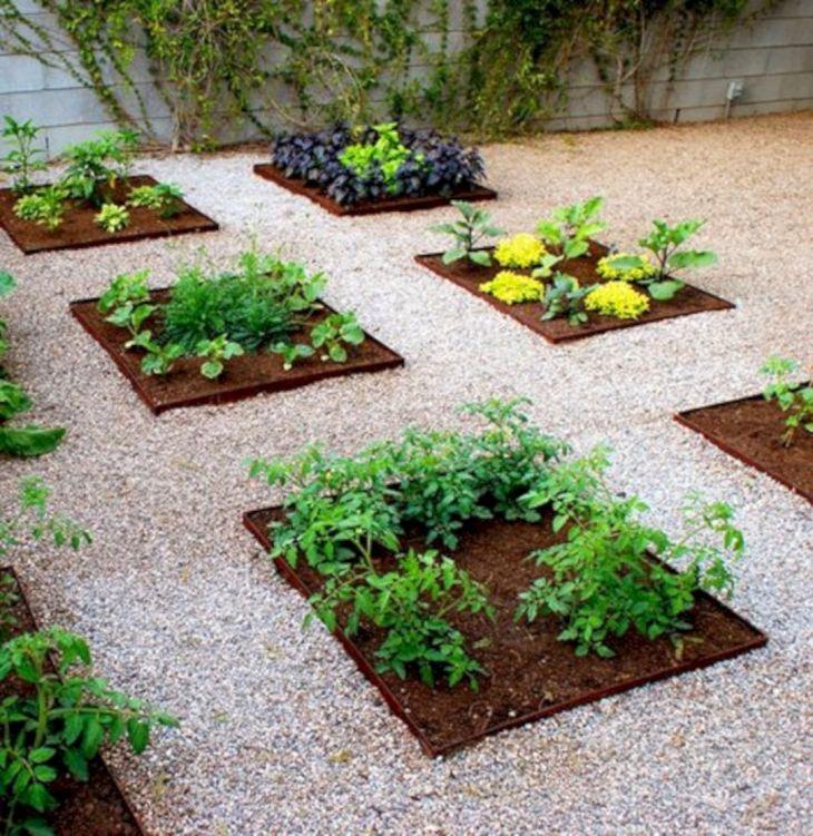 Vegetable Garden Ideas 11
